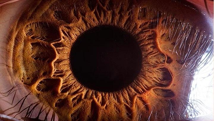 15 واقعیت درباره چشم انسان